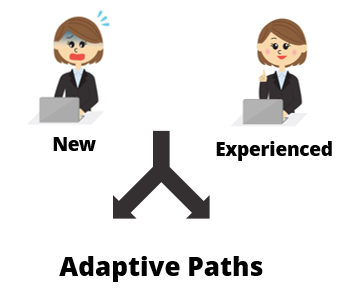 Articulate Rapid E-Learning Blog - knowing your online learners and adaptive paths